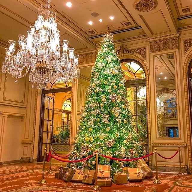 The Plaza Hotel Lobby Christmas Tree Home Alone 12 12 18 Homealone2 Newyorkcity Shotoniphone Seeyourcity Hotel Lobby Plaza Hotel Hotel