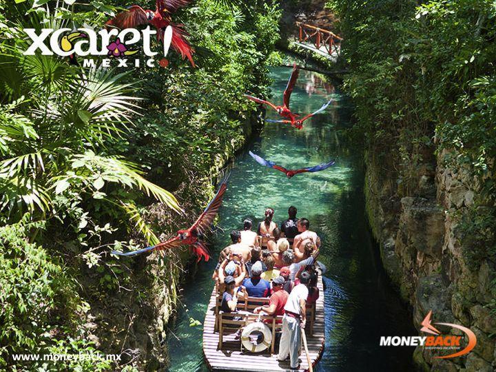 Xcaret es un santuario natural donde la diversión y la historia de México se combinan con las tradiciones y el esplendor de la cultura maya. Está situado a orillas del Mar Caribe y ofrece experiencias mágicas donde corren ríos subterráneos, además de la fauna de la selva maya y espectáculos inolvidables. Xcaret es una empresa afiliada a Moneyback! #Cancún