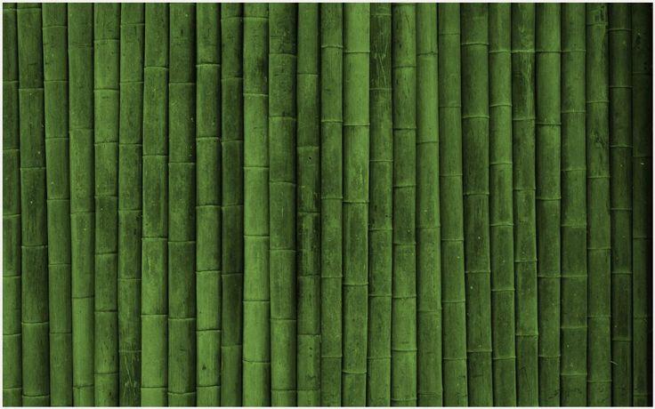 Bamboo Texture Background Wallpaper