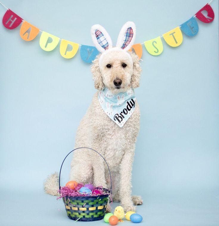 Reversible Dog Bandana Dog Bandana Dog Bandana Reversible Pet Bandana Easter Bandana Tie On Bandana Rabbit Bandana Easter Dog Bandana