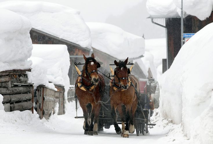 A horse-drawn sleigh makes its way on a snowy road in Klosters Monbiel, Switzerland on February 2, 2012.