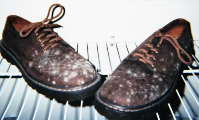 Mildew can cause permanent damage to leather clothes and shoes. Learn how to remove mold and mildew safely and effectively from leather.