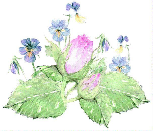 Luonnon Kaunis Iho - Frantsila. Sisäinen ja Ulkoinen Kauneuden Hoito. Kauneus on terveyttä ja terveys on tasapainoa - ja tasapainon tulisi vallita niin fyysisellä, psyykkisellä kuin henkisellä puolella. Kun ihminen on sopusointuinen; tyytyväinen ja onnellinen elämässään, ravitsee hän koko olemustaan...