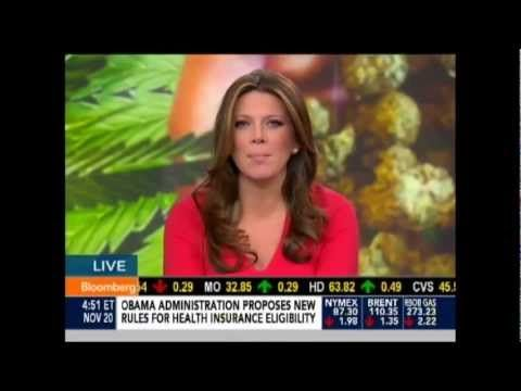 MEDBOX CEO Speaks with Bloomberg TV About Marijuana Legalization & Surge in Company Stock Price