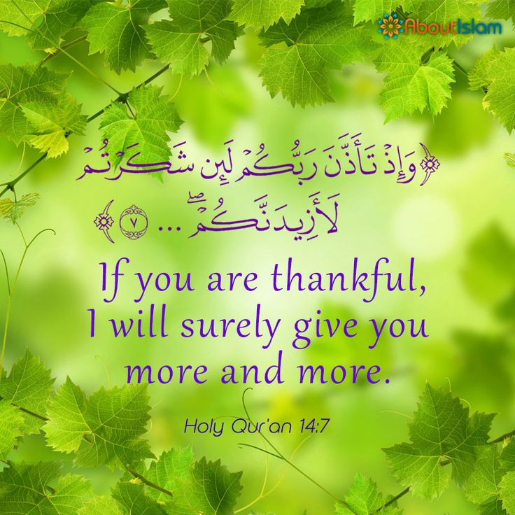 How lucky we are as Muslims to be rewarded for simply being thankful! #islamicquotes