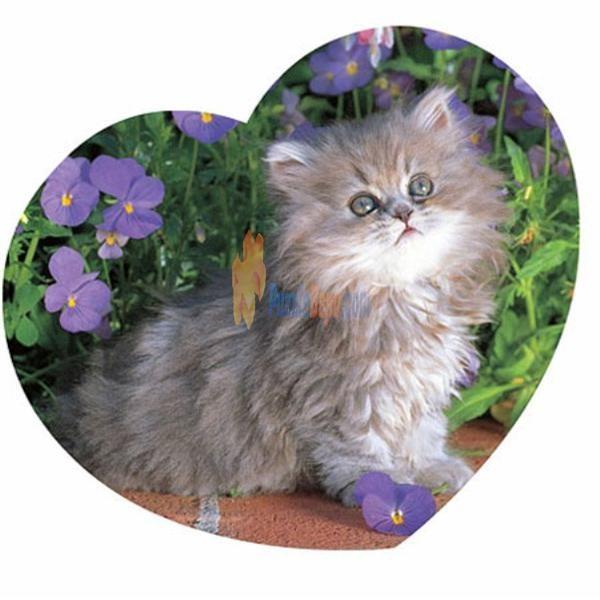 Puzzledepo.com 'da Masterpieces 500 Parça Shaped Kalp Puzzle Cuddle Me Kitty    #puzzle #sevgili #sevgililergünü sevgililer günü #hediye #kalp