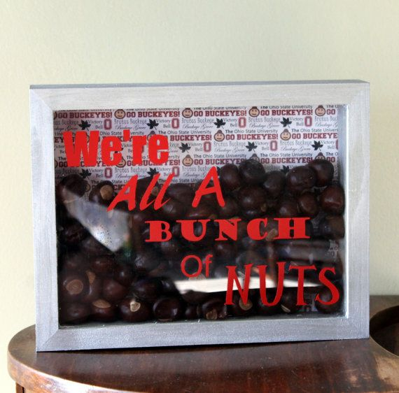 Ohio State Decor We're All A Bunch Of Nuts by thebuckeyelady