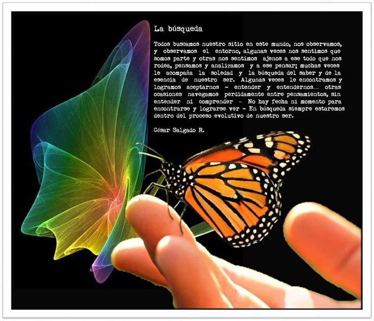Saber soltar…       Saber soltar se dice fácil, simple y muy poco entendible para quien no lo carga o lo mantiene en sus manos.        ...