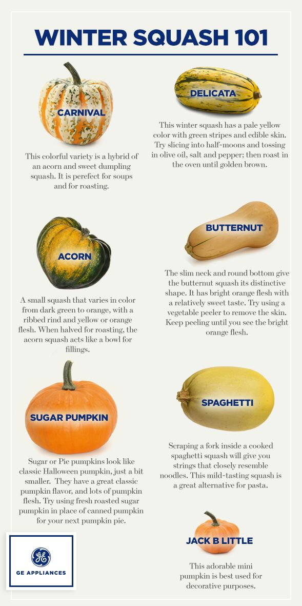 Confused by the varieties of squash in the store? Let us explain the difference between butternut squash, acorn squash, spaghetti squash and delicata squash.
