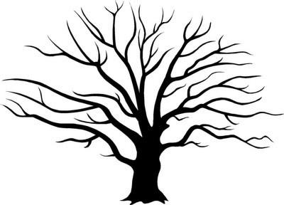 Family Tree wall inspiration
