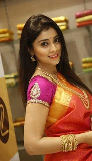 Shriya Saran Orange Saree Jewellery Photoshoot