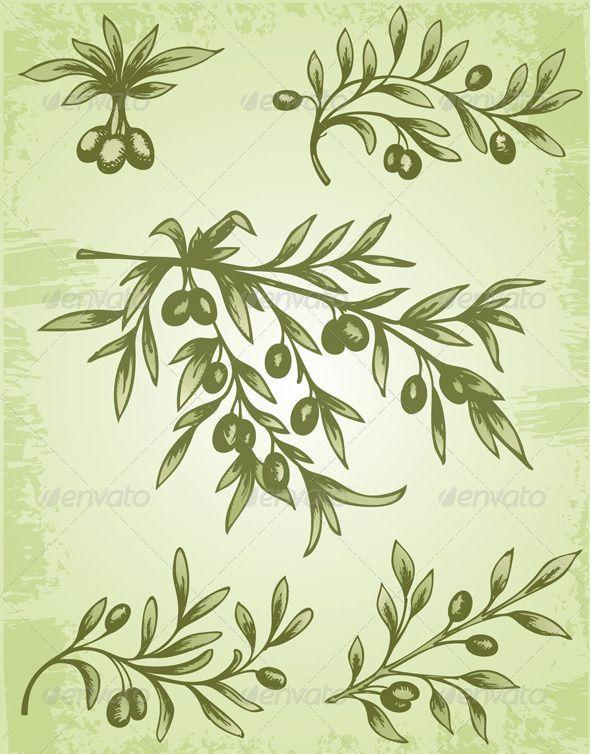 illustrations of olive tree - Αναζήτηση Google