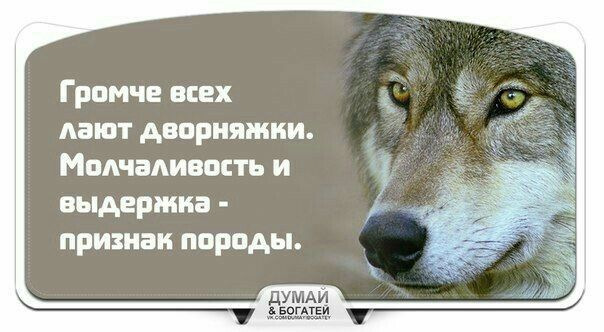 #Мудрость #Психология