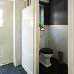 Donkere kleur toiletmuur boven witte tegels. Houten plinten, houten lijst.