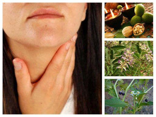 Кои билки се използват при лечението на щитовидна жлеза, Хашимото, хипертиреоидизъм и хипотиреоидизъм. Официални методи и народна медицина. Зелени орехчета - вършат ли работа? Възли. Още в текста: ♣ Билки и суперхрани за лечение на щитовидна жлеза. ♣ При ХИПЕРТИРЕОИДИЗЪМ, ниско TSH: ♣ Маточина (и за хашимото). ♣ Корен от ехинацея (също при хашимото и [...]Continue reading...