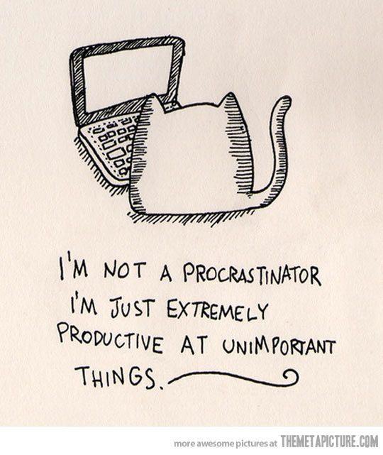 I'm not a procrastinator…