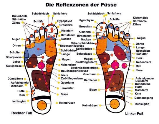 Die Fußreflexzonen unserer Füße
