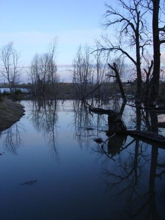 Fish Creek Provincial Park TripAdvisor review #travelalberta #calgary #yycre #yyc