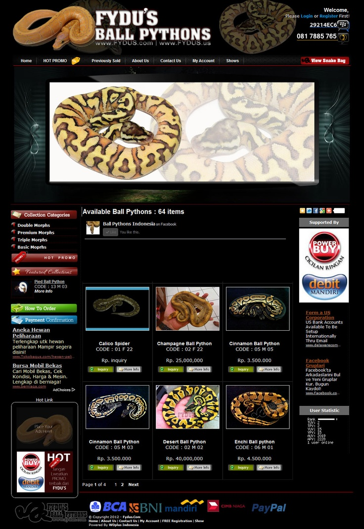 """Premium Collection""""Ball Python"""" at http://fydus.us"""