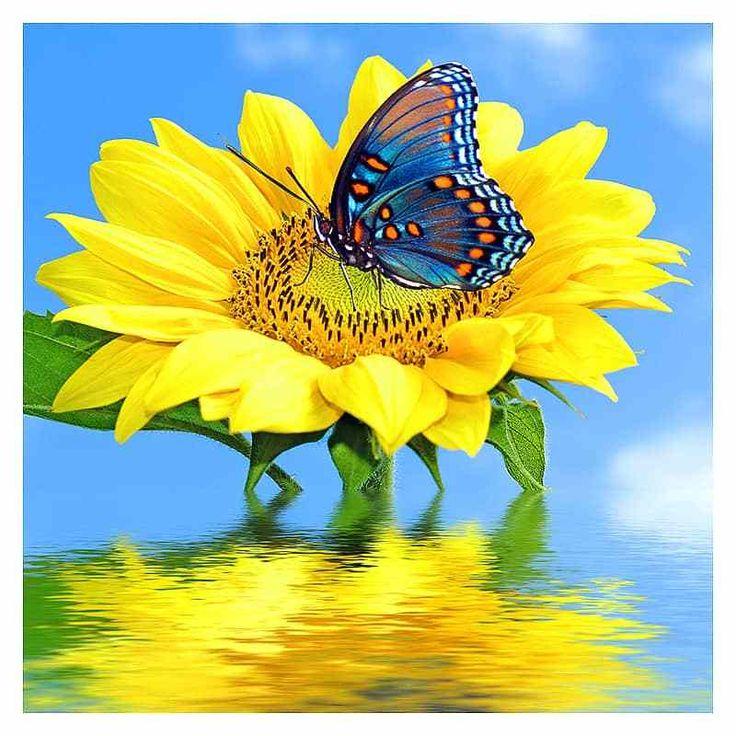 Sunflower Butterfly Diamond Painting Kit | Neon flowers ...