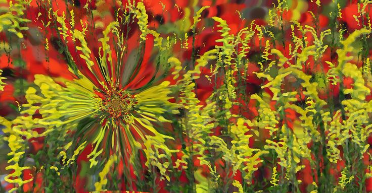 RED AND YELLOW BY TATIANA LOPATINA.  VISIT OUR WEBSITE FOR MORE GREAT IMAGES www.lailas.com