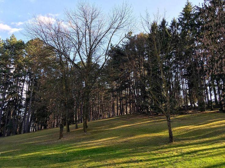 Beautiful nature in Bojnice Spa Slovakia.  ___ #green #grass #nature #trees #bojnice #spa #slovakia #slovensko #kupele #sky #blue #light #shine #sunshine #yellow #daylight #day #sunlight