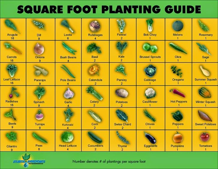 Let's Get Sowing! Tips for Growing the Edible Garden ~ Lovely Greens.  If you only have a small area in which to grow veggies, you might want to consider Square Foot Gardening. Using this method, it's possible to grow an astonishing amount of veggies in a small space using rich compost, raised beds, and a square foot planting guide like the one above from Garden Therapy and Atlantis Hydroponics.