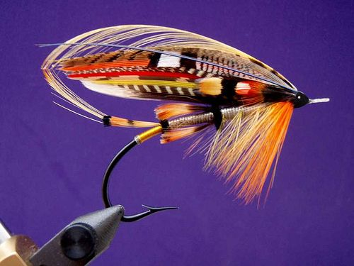 Torrish - a classic salmon fly pattern. | Fly Tying ... Classic Atlantic Salmon Fly Patterns