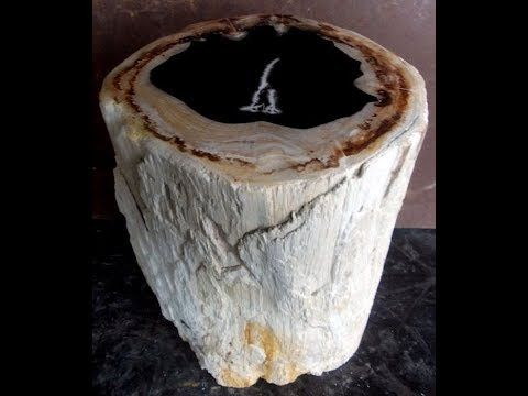 Petrified Wood Table Care