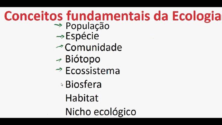 Curso de Biologia Conceitos fundamentais Ecologia População Espécie Comu... https://youtu.be/89vmEDimpP8