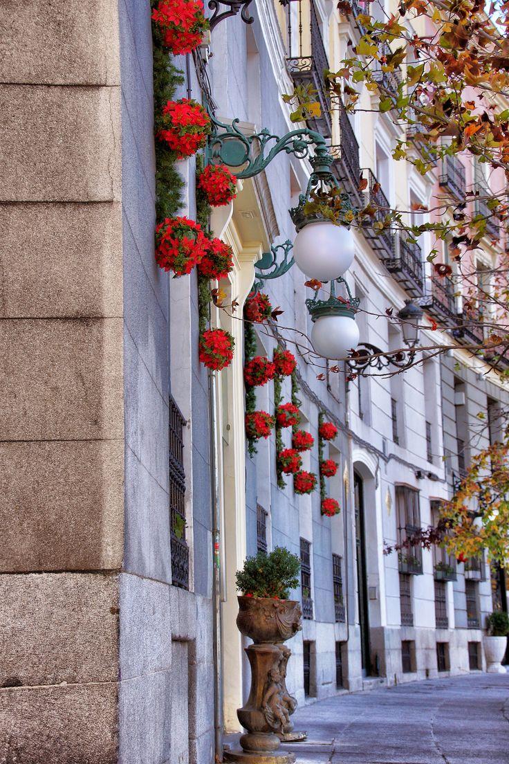 In the corner of the street of Carlos Ⅲ, Madrid