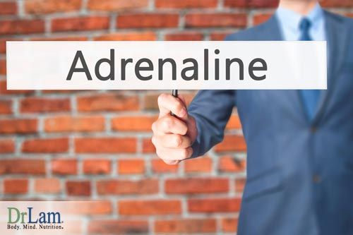 Adrenal Fatigue is more than excessive tiredness. Many other health conditions could be related or associated with Adrenal Fatigue. Find out more here!