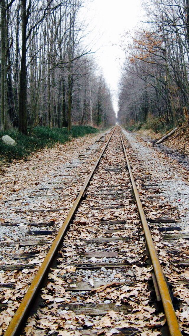 View down the tracks source Train tracks