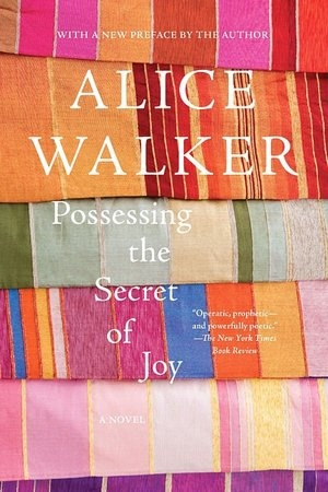 My favorite Alice Walker book - and the hardcover has one of the best book designs I've seen - the alternating page lengths let you know there's more than one character, one story.