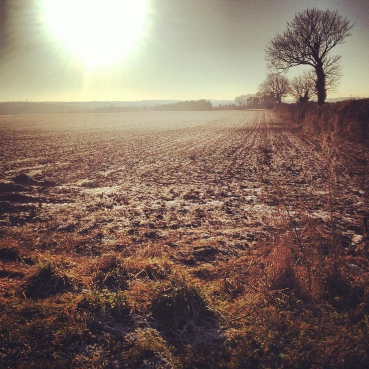 Winter in the Lincolnshire Wolds