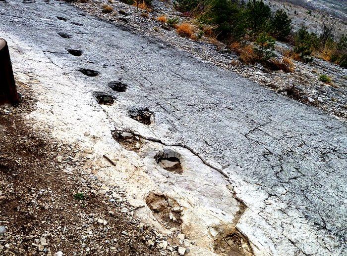 I LAVINI DI MARCO Una zona di terra a sud del Trentino dove le numerose frane cadute nei secoli hanno portato alla luce evidenti impronte di dinosauri che hanno abitato la regione più di due milioni di anni fa. Oggi facilmente osservabili nell'ammasso di rocce che caratterizzano il paesaggio desertico.