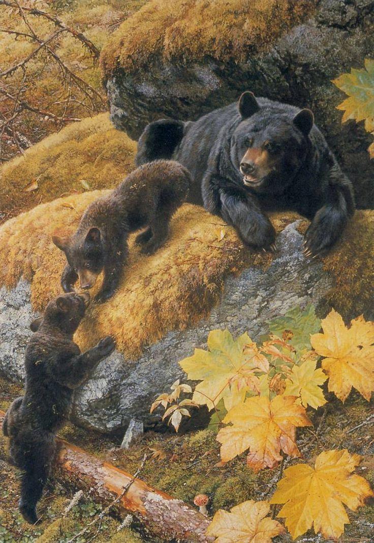«Тайная жизнь животных» | Carl Brenders.. Обсуждение на LiveInternet - Российский Сервис Онлайн-Дневников: