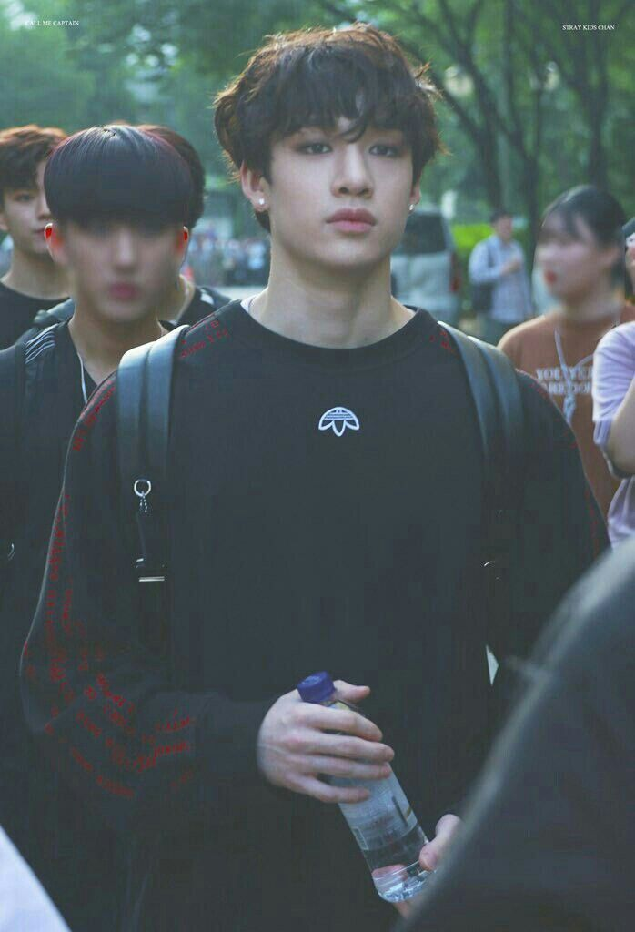 Idol As Your Stray Kids Chan Stray Kids Groups