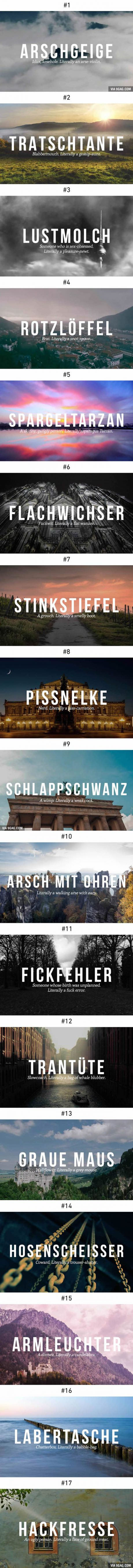 Brilliant German Insults
