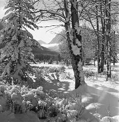 Bruno Engler Black And White Photographs  Hillside Corral (Photograph) (BRUORGSW004)