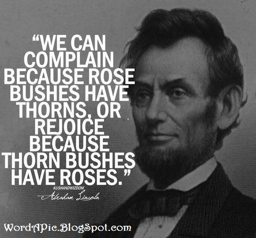 Another inspiring Quote by another American President.  Roses and Thorns by Abraham Lincoln.