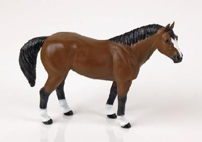Quarter Horse (Winner's Circle) at theBIGzoo