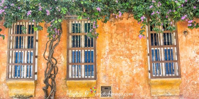 Colonial and colorful houses of Cartagena Colombia http://aristofennes.com/calles-cartagena-de-indias-colombia/