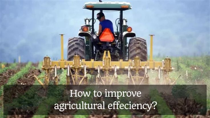 So what can be done to improve the agricultural effeciency? Read here #Agriculture #Farmers