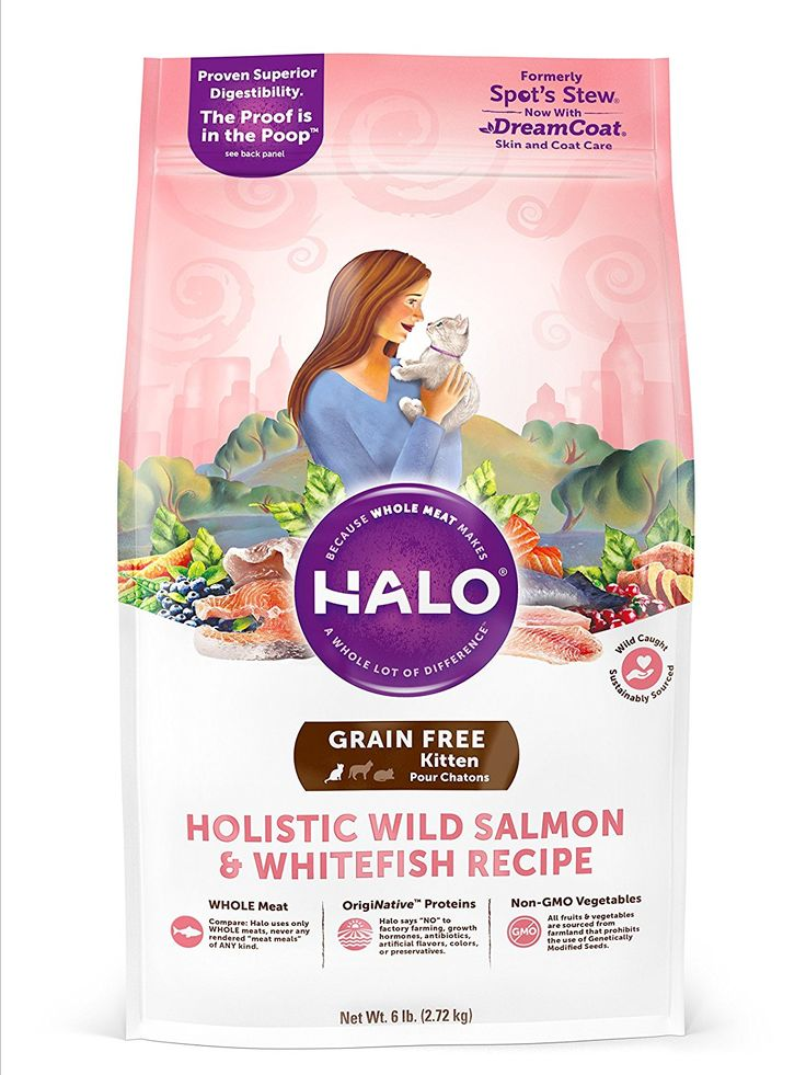 Halo holistic dry cat food for kittens wild salmon and