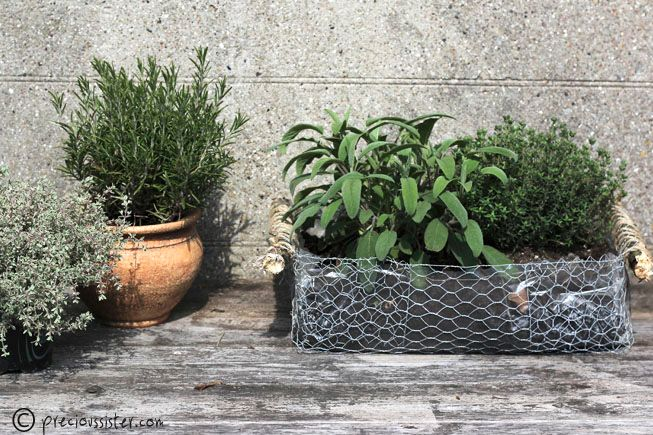 Make a chicken wire basket tutorial and 45 BEST Shabby Lifestyle Decor & Accessory DIY Tutorials EVER!! From MrsPollyRogers.com