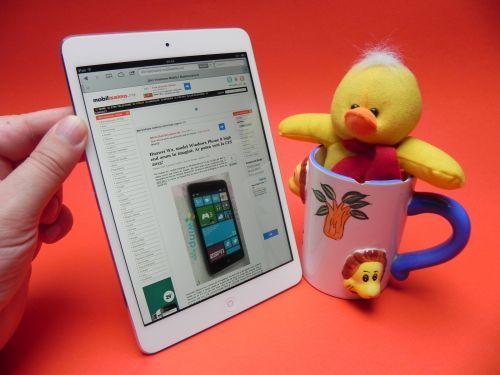 Review iPad mini