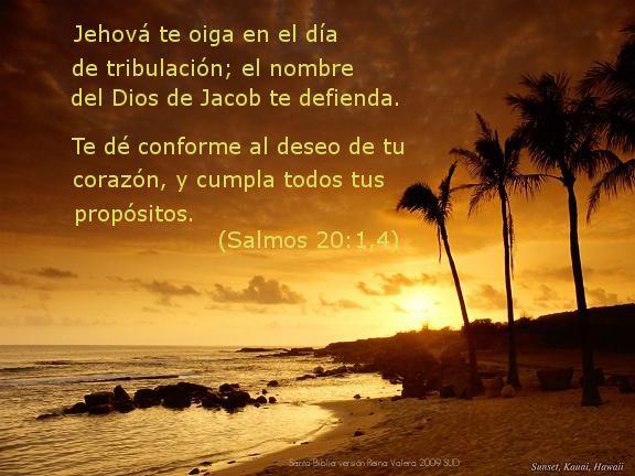 Salmos De La Biblia | ... Audio de La Santa Biblia Reina Valera 2009 SUD: Día 170: Salmos 20-25