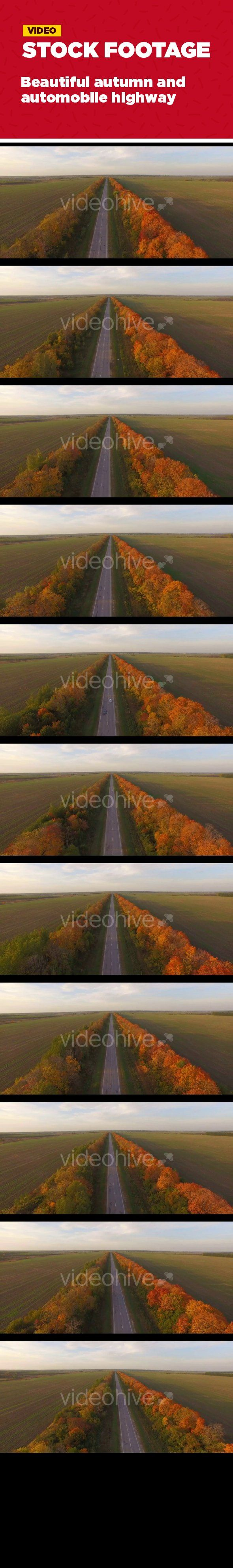 asphalt, auto, automobile, autumn, background, beautiful, fall, forest, highway, landscape, nature, road, transport, transportation, travel Beautiful autumn automobile highway, field, forest.   Top view. Aerial. Excellent video for movies and advertisements about the production, technology and business.   1 clips in the pack. Shot with a 4K, 25fps