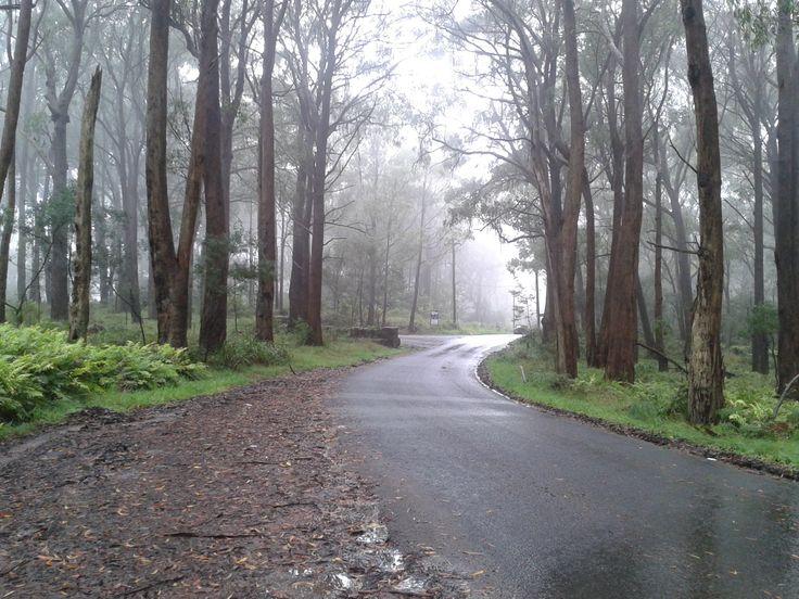 Rainy day on Mt Gibralter